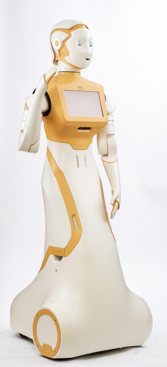 PAL Robotics' ARI robot full