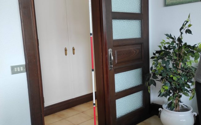 A photo of the red and white cane in a room with a potted plant